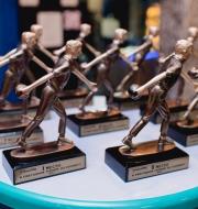 Ежегодный турнир по боулингу 2016